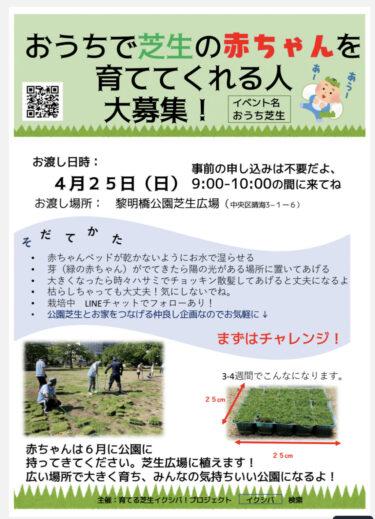 おうち芝生イベント予告 その2(動画あり)